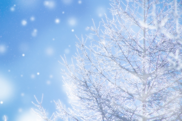 雪が降ったら注意して!雪掃きをする際の注意点3つ